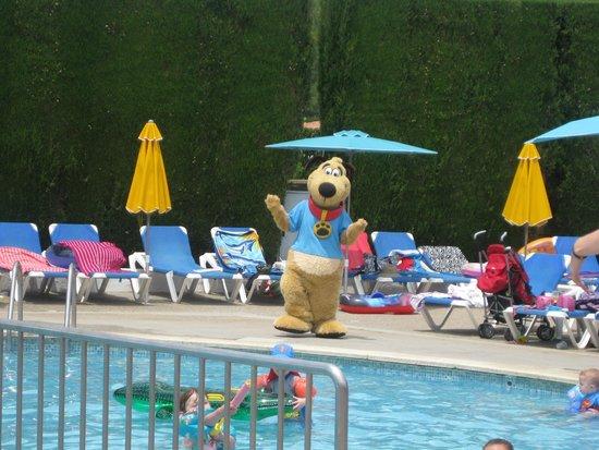 Hotel Stil Victoria Playa: Thompson the dog