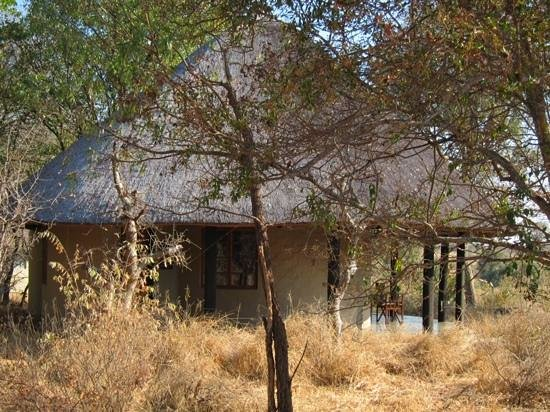 Motswari Private Game Reserve : our bungalow