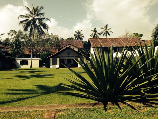 Paradise Road The Villa Bentota: The property
