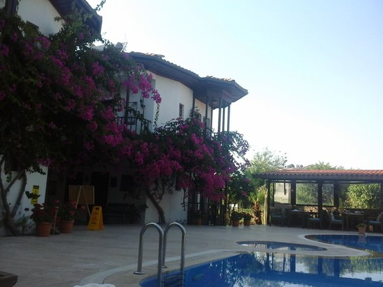 Murat Pasa Konagi: photo from pool