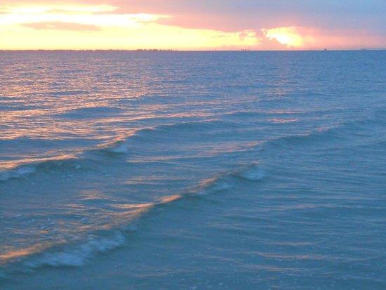 """Pointe Estero Beach Resort : From Pointe Estero's """"back yard""""."""