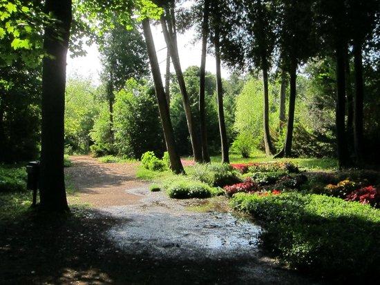 Grand Hotel: Gardens & Grounds