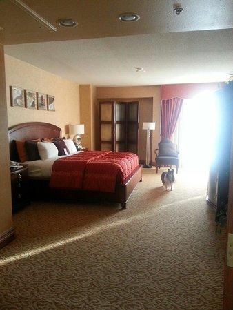 Embassy Suites by Hilton Hot Springs: Bedroom of main area. Several closets.