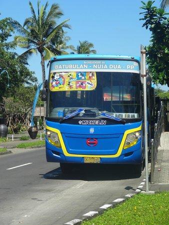 Salsa Verde: Public bushalte