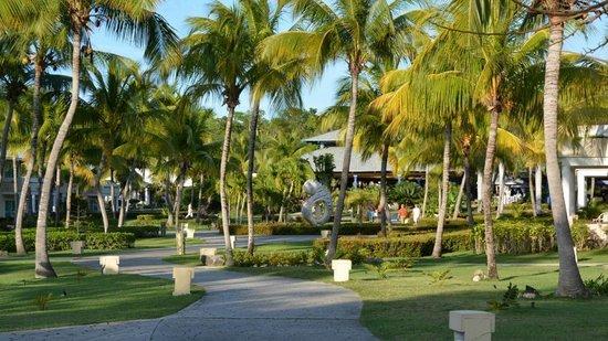 L Amenagement Paysager Picture Of Paradisus Rio De Oro Resort