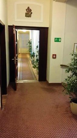 Hotel Austria: Hallway