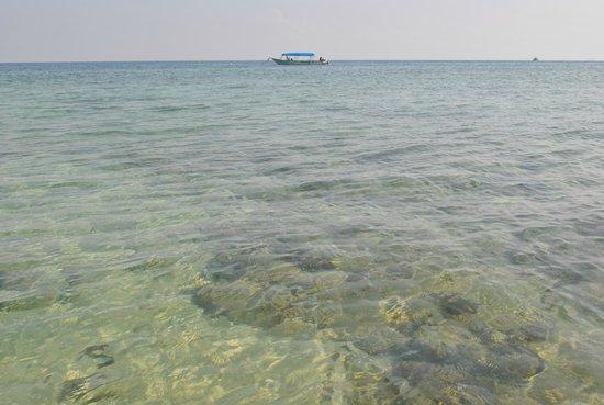 Minang Cove Resort : Beach
