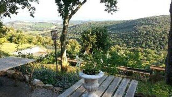 Domaine Michaud : dining terrace