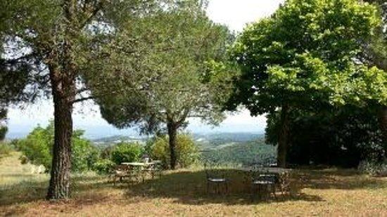 Domaine Michaud : the garden