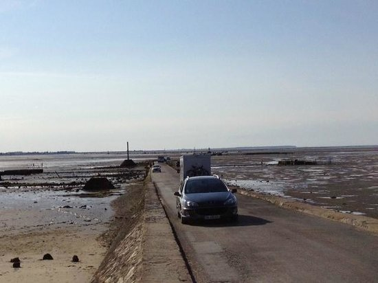 Le Passage du Gois : The Gois emerges from the sea once more