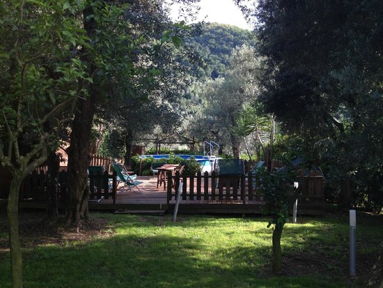Villa Pane: pool area
