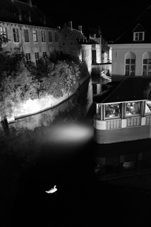 Relais Bourgondisch Cruyce - Luxe Worldwide Hotel: Night view of swan from our room (21)