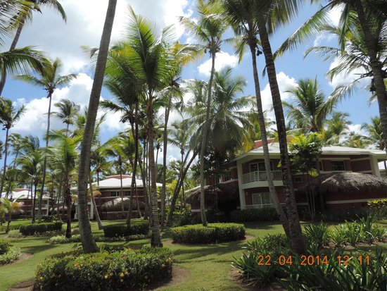 Grand Palladium Bavaro Suites Resort & Spa: Área do resort
