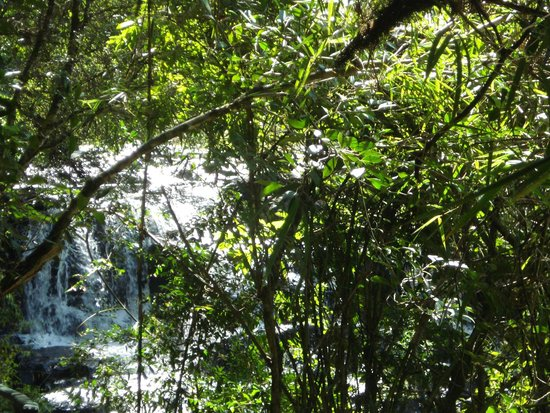 Caracol State Park: rapidos