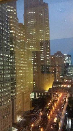 Shinjuku Washington Hotel Main: View over Shinjuku