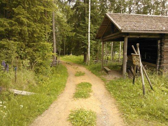 Marttinen : A sandy road
