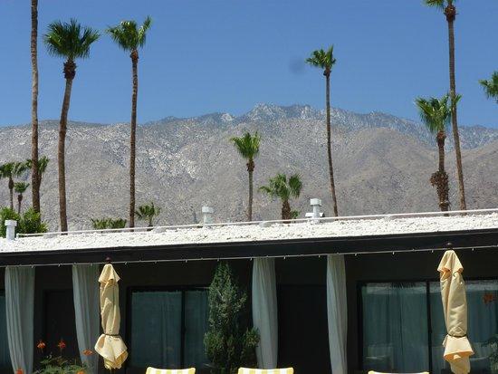 Avanti Hotel: daily view