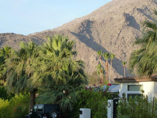 Avanti Hotel : Palm Springs view