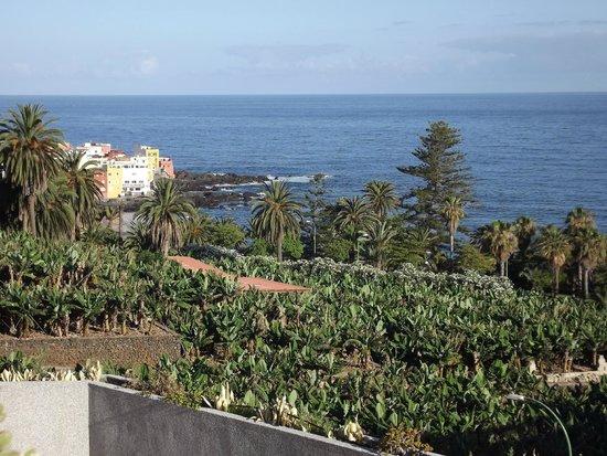 Gran Hotel Turquesa Playa: Punta Brava