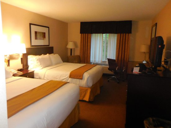 Holiday Inn Express Hotel & Suites Hill City : Room