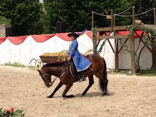 Château de Chambord : Riding show
