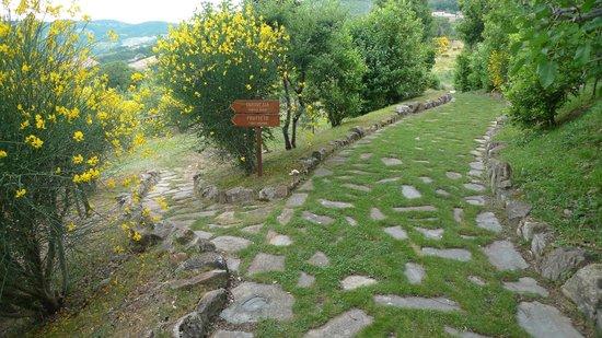 Castello di Petrata: Nombreux petits chemin aménagés du domaine