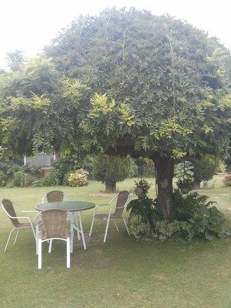 Hotel Dar-Es-Salam : Gardens