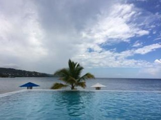 Round Hill Hotel & Villas: Infinity Pool