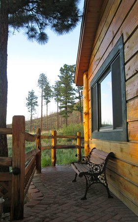 Pikes Peak Resort: View from hot tub - back patio area