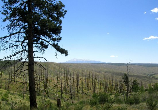 Pikes Peak Resort: View of PIkes Peak from top of mountain - hike from cabin