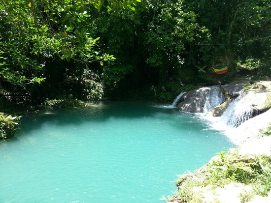 Uton's Private Tours: Blue Hole - great stop during our day out in Jamaica!