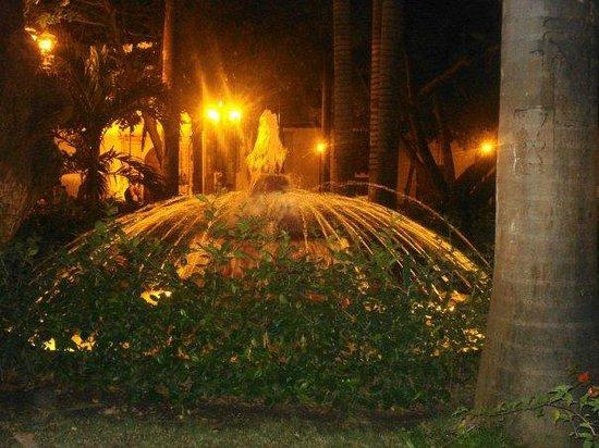 Plaza Bolivar : Fuente