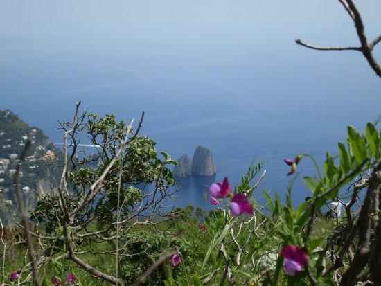 Mount Solaro: Monte Solaro 4
