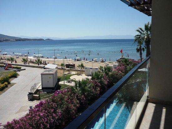 Paloma Pasha Resort : Vu d'une terasse suite familiale (coté extérieur)