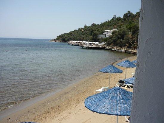 """Paloma Pasha Resort : plage devant le restaurant du midi, avec ponton """"quiet zone"""" au fond"""