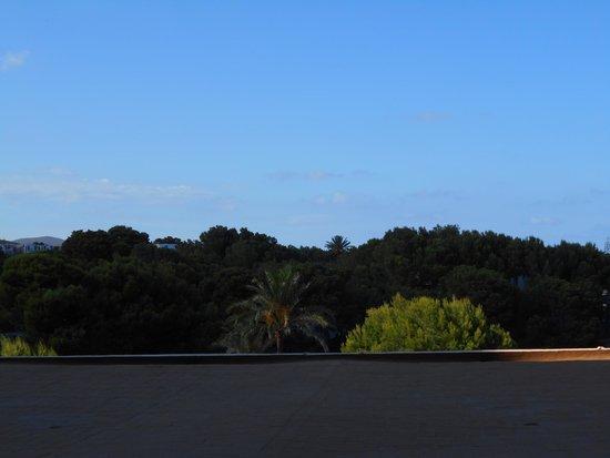 Roc Carolina: vue de la chambre 1ere etage