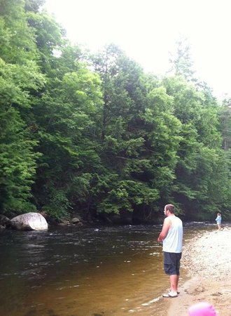 Camping on the Battenkill : fishing/ swimming area