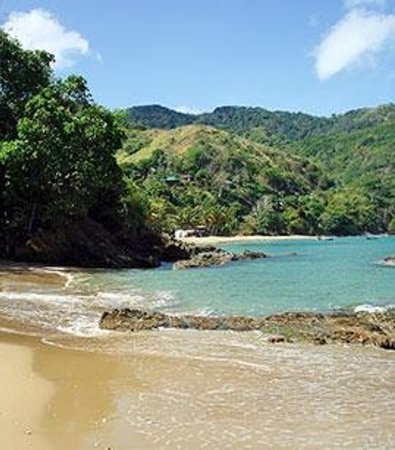 Sandcastles Holiday Apartments: castara beach