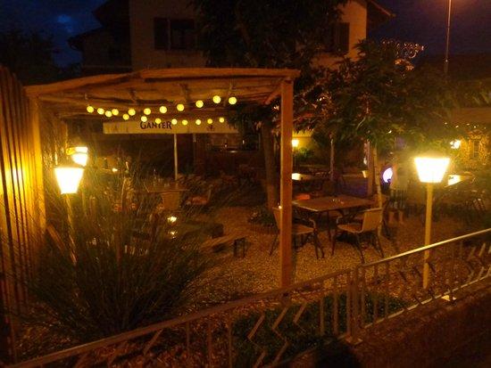 Gasthaus Adler : Garten1