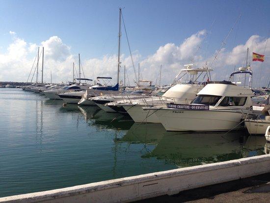 Puerto Banús Marina: Puerto banus