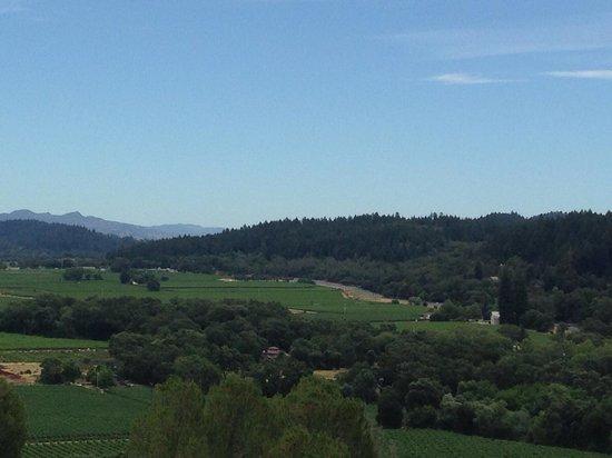 Sterling Vineyards : View