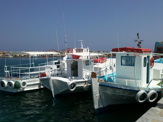 Aspasia Maria : porto