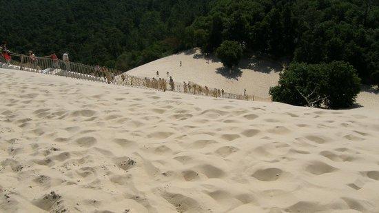 Dune du Pilat : La scala per la cima della duna