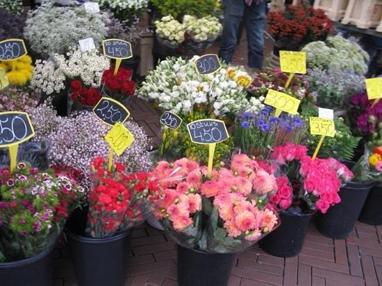 Dapper Markt: Beautiful......and cheap!