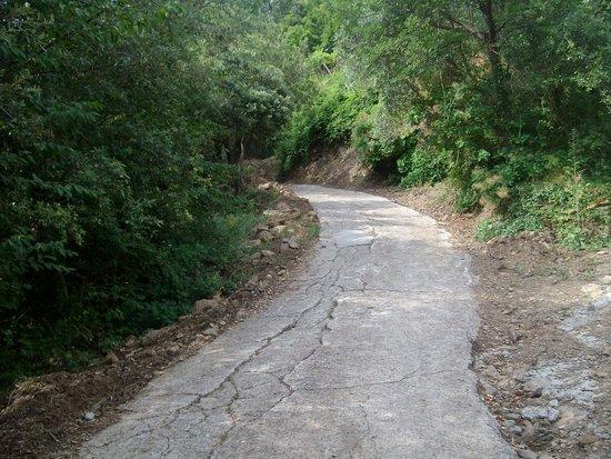 Agriturismo Al Pagan: strada 2