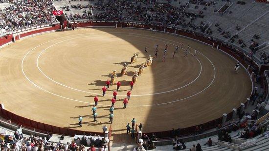 Plaza de Toros las Ventas: La entrada al ruedo de los toreros