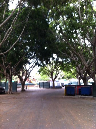 Campland on the Bay: Tree lined street provides nice shade