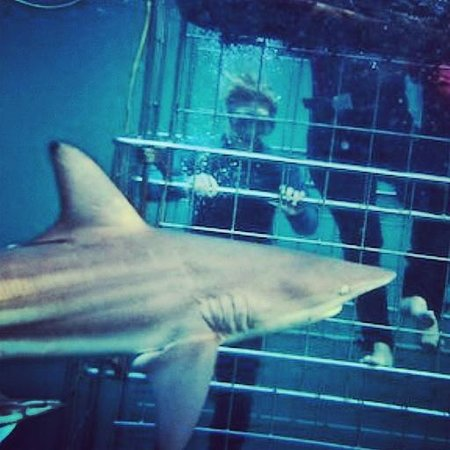 Shark Cage Diving KZN: thats me!! and a lady in a cage...