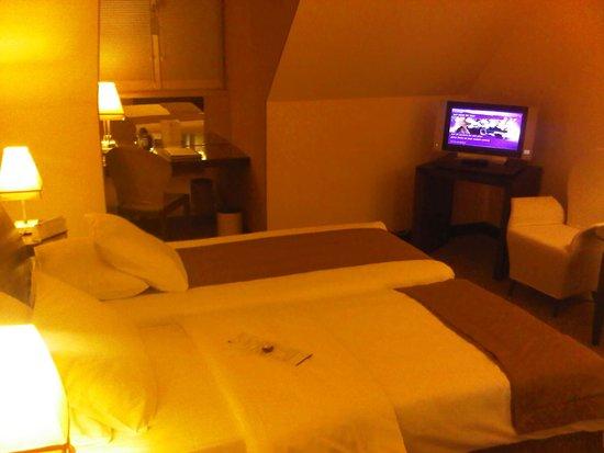 Mamaison Hotel Le Regina Warsaw : Standard Room 214