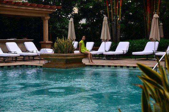 Park Hyatt Saigon: Very nice pool